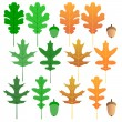 Oak leaf set — Stock Vector