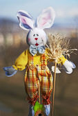Easter rabbit — Stockfoto