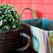 Stock Photo: Two decorative wicker planters