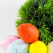 Dyed easter eggs with green decoration - Stock Photo