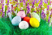 Image of easter eggs — Stock Photo