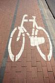 Bike,path,ride, — Stock Photo