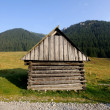 Mountain,Tatry,Poland - Foto Stock