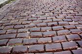 Pavement, stone — Stock Photo