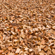 Lumber sun-drying — Stock Photo #10590819
