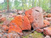 Red Stones — Stock Photo