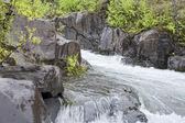 The mountain river — Stock Photo