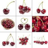 Cherry — Stock Photo