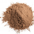 Cocoa powder — Stock Photo #10470550