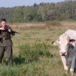 Stock Photo: Germsoldier want to kill cow.