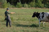 German soldier want to kill cow. — Stock Photo