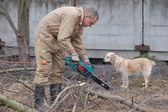 园丁工作用链锯 — 图库照片