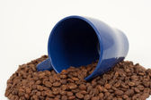 Blue cup and coffe beans — Stock Photo