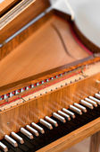 Harpsichord Keyboard — Stockfoto
