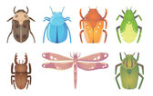 The Bugs — Stock Vector