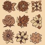 Flowers — Stock Vector #8834598