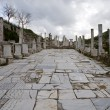 Stock Photo: Pillars in Ephesus