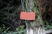 A rusty red signboard on an old-timer tree — Stock Photo