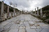 Pillars in Ephesus — Stock Photo