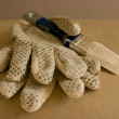 Gloves and brush - Stock Photo
