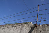 Barbed wires — Stock Photo