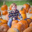Royalty-Free Stock Photo: Boy with pumpkins