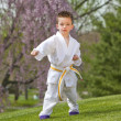 Karate kid — Stock Photo