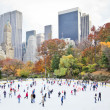 Stock Photo: Skating in New York