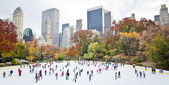 Skating in New York — Stok fotoğraf