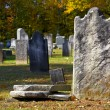 Headstone — Stock Photo #8403723