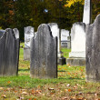 Stock Photo: Headstone