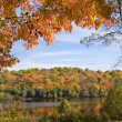 Fall scenic — Stock Photo #8403884