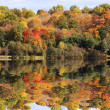 Fall scenic — Stock Photo #8403900
