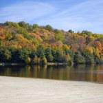 Autumn trees and lake — Stock Photo