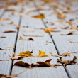 Wet leaves on decking — Stock Photo