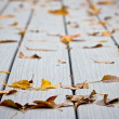 Stock Photo: Wet leaves on decking