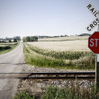 Railroad crossing — Stock Photo #8404540
