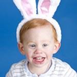 Easter bunny boy — Stock Photo