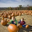 Royalty-Free Stock Photo: Pumpkin patch fun