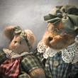 Old bears - Photo