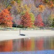 Fall trees by water - Stock Photo
