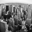 New York skyline — Stock Photo #8408922