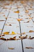 Hojas mojadas en tarima exterior antideslisante — Foto de Stock