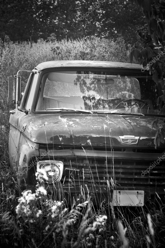 Old pick-up truck in a field  Stock Photo #8407413