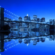 Brooklyn Bridge — Stock Photo #8421527