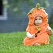 Pumpkin boy — Stock Photo #8421666