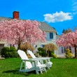 House in spring — Stock Photo #8421761