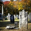 Cemetery — Stock Photo #8422501