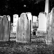 Stock Photo: Headstones