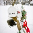 Royalty-Free Stock Photo: Winter mailbox